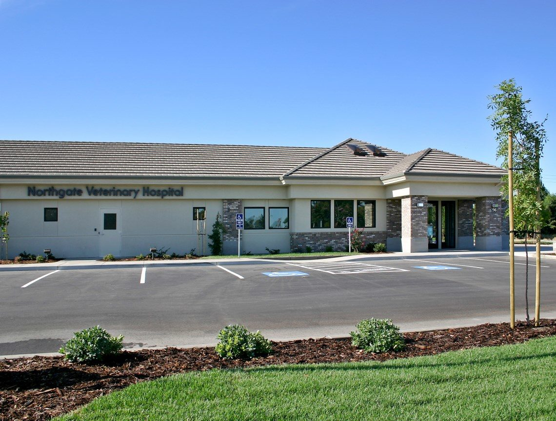Northgate Veterinary Clinic